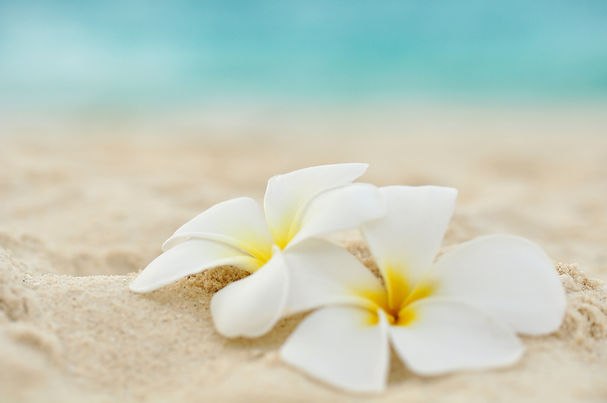massage relaxing well-being calm