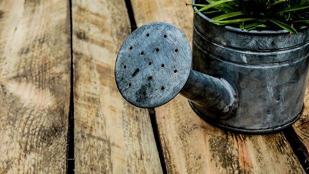 watering-can-1506750_1920.jpg
