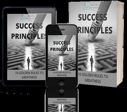 SuccessPrinciplesa.png