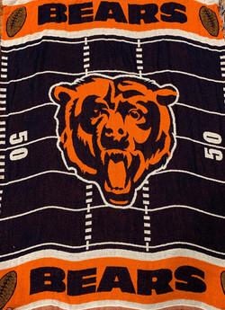 Blanket #00028