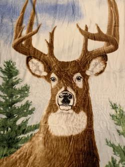 Blanket #00079