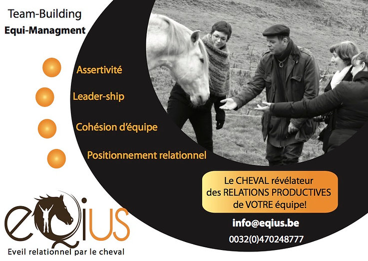 Team-building chevaux