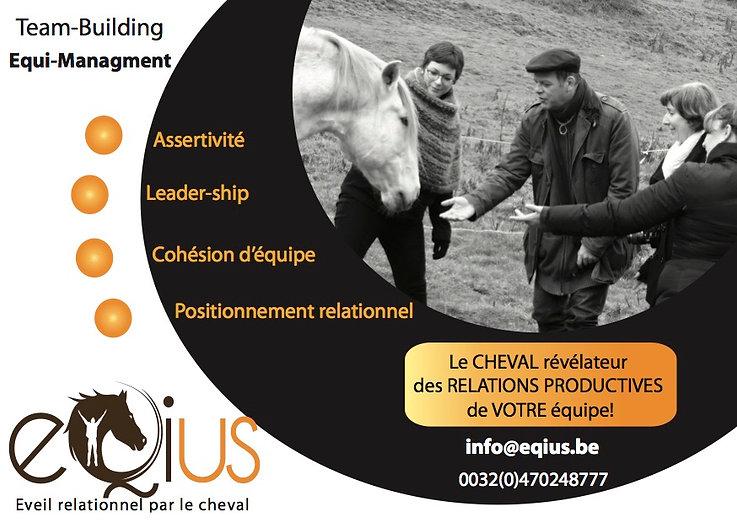 Team-building chevaux