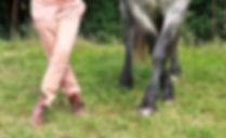 Ethologie Equine