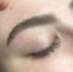 abbysbrows.png