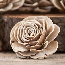 Natural Beauty Rose