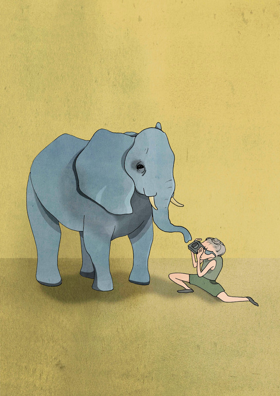 Elefant.jpg