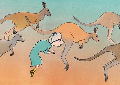 Kenguru.jpg