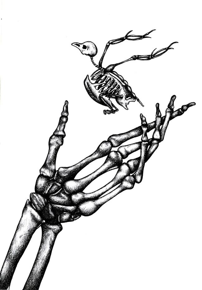 Anatomistudie.jpg