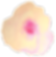 Flower pinkg_cymk1_edited.png