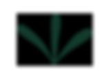 3-brins-herbe.png