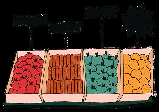 etale-de-legumes.png