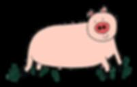 porc-heureux.png