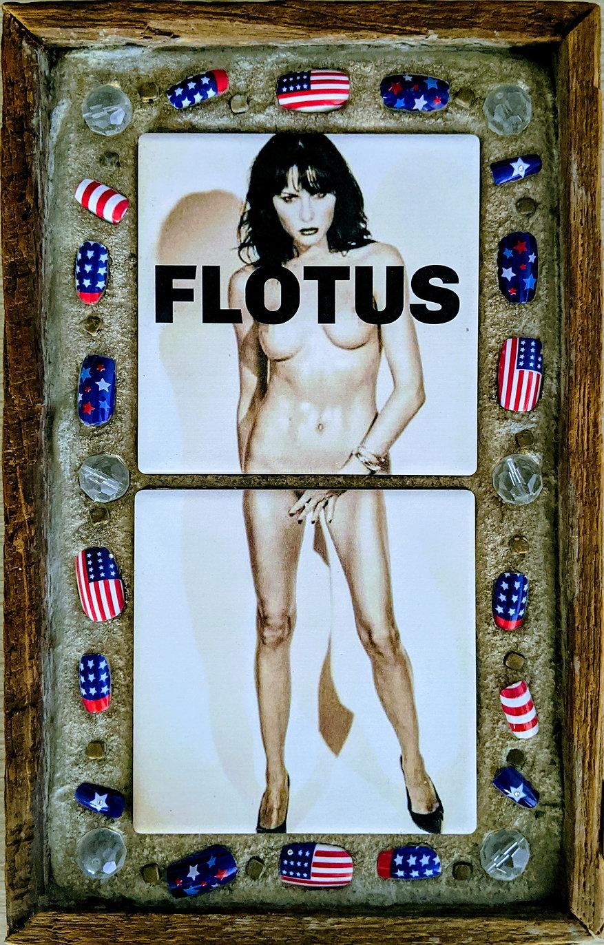 FLOTUS_mosaic.jpg