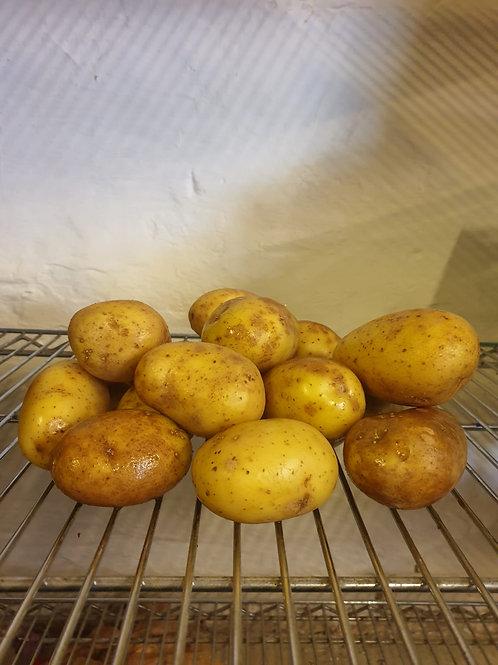 2kg Potatoes