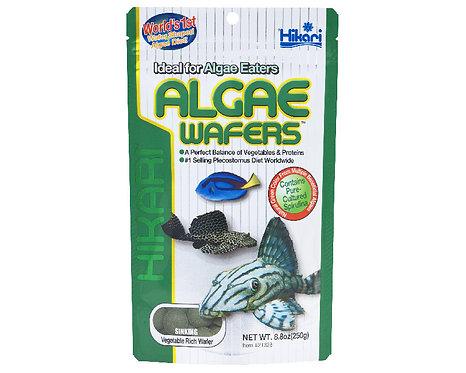 Hikari Tropical Algae Wafers