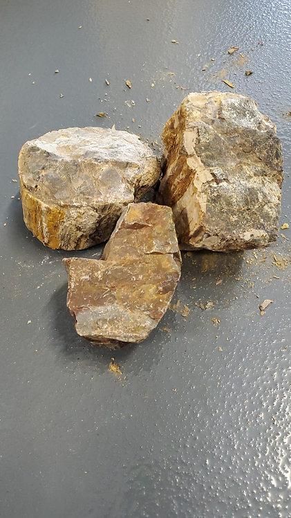 Wood Fossil Stone X lb