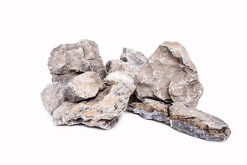 Seiryu Stone x lb