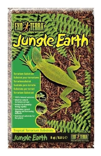 Exo Terra Jungle Eart