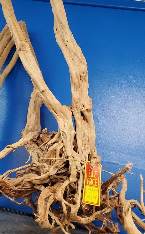 Rainforest Wood Root....