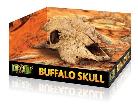 Exo Terra Bufalo Skull