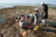Petite après-midi à la pêche à pieds au camping les cytises
