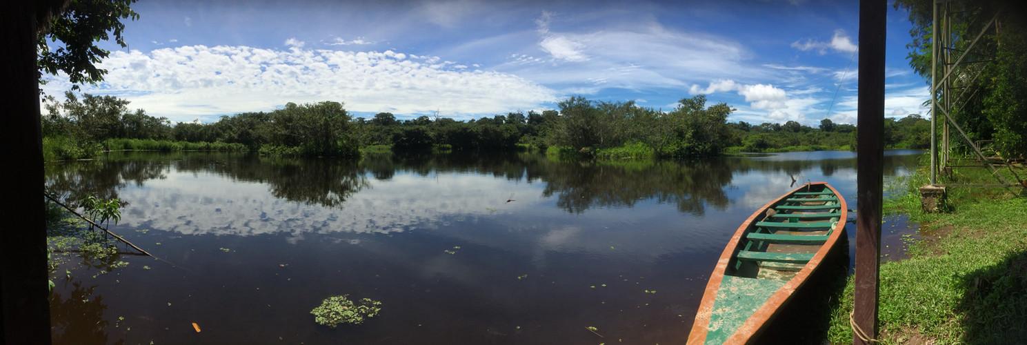 Cocha Perdida - Tambopata .jpg
