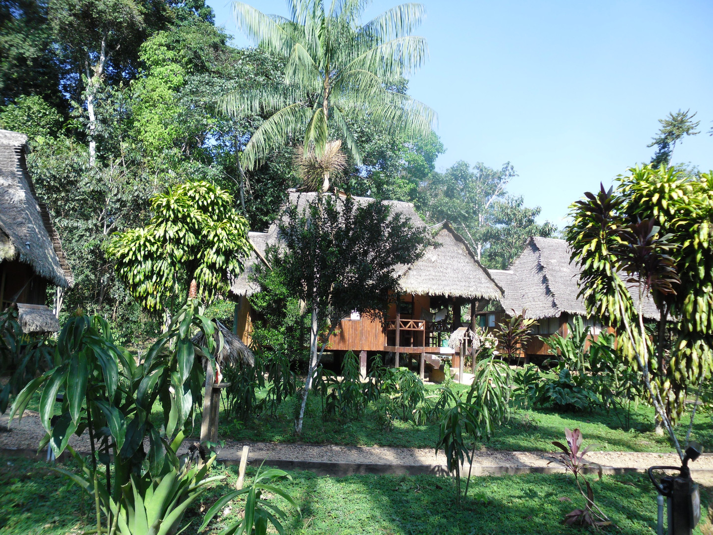 Tambopata lodge.JPG