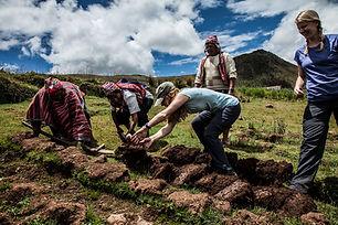 Experience Peru - agricultura.jpg