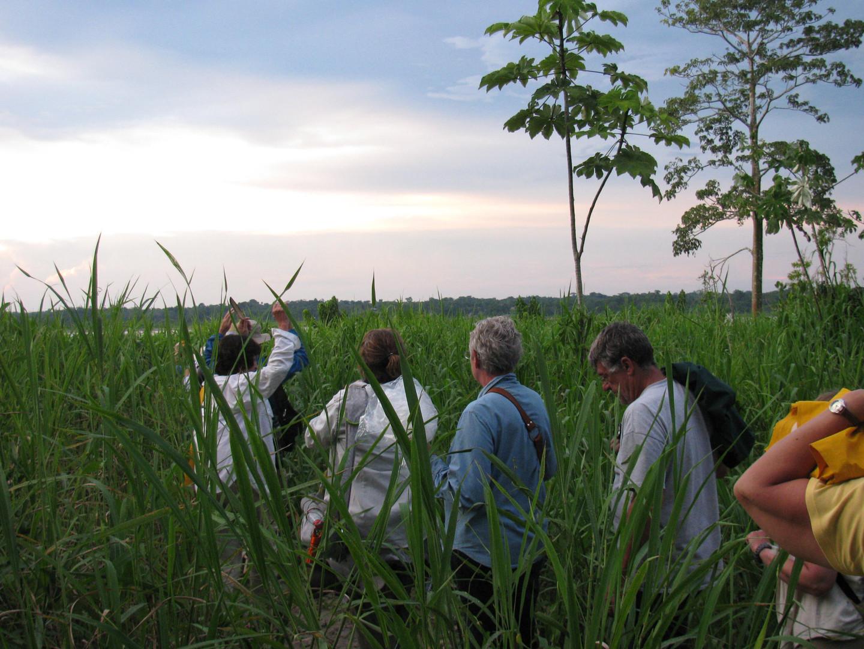 Paseos Iquitos.JPG