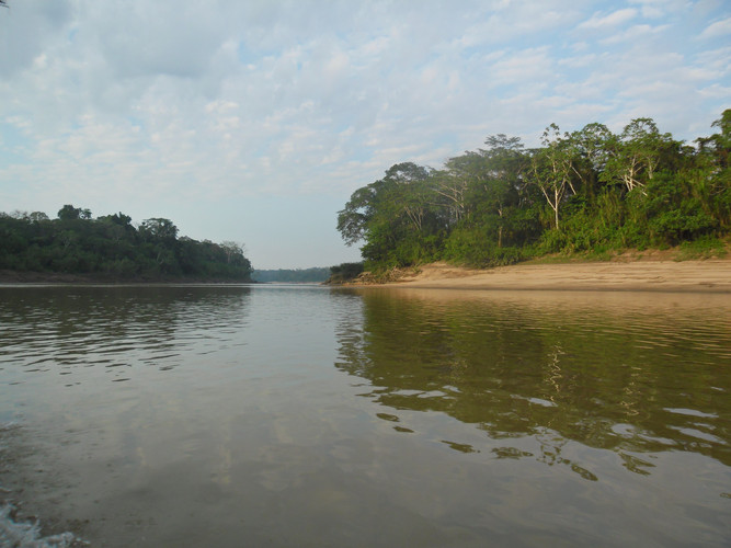 Rio Tambopata.JPG