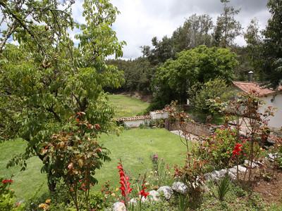Huerto, La Casona Princesita.jpg