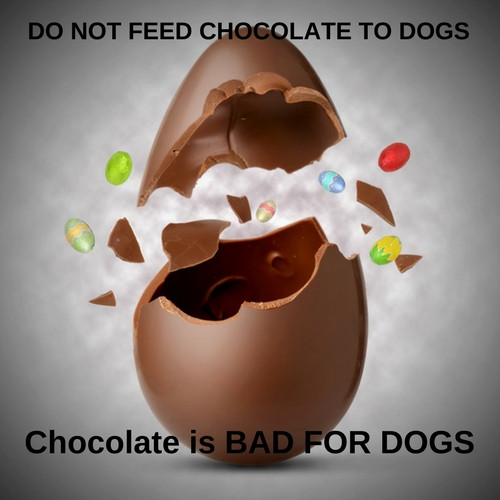 Easter Dog Treats are made with CAROB