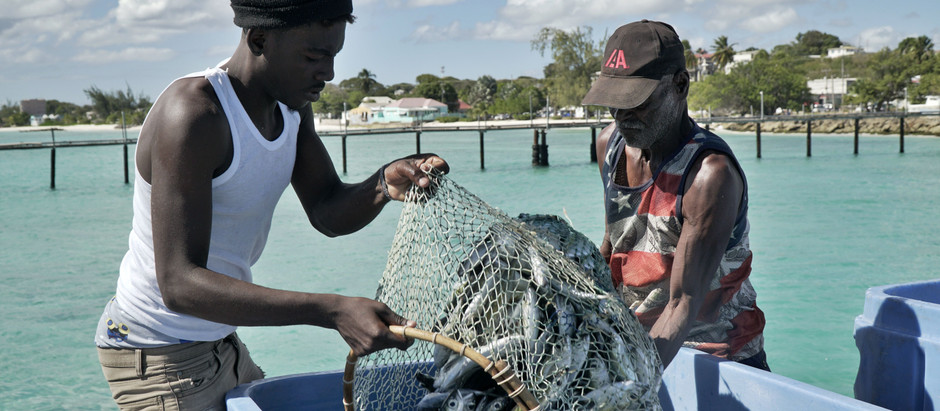 Seaspiracy missed  an opportunity to spot the allyship of artisanal fishers
