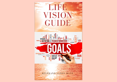 Vision guide cover500 x 350.png