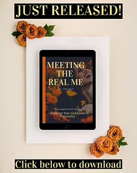 Meeting%20the%20real%20me%20ebook_edited