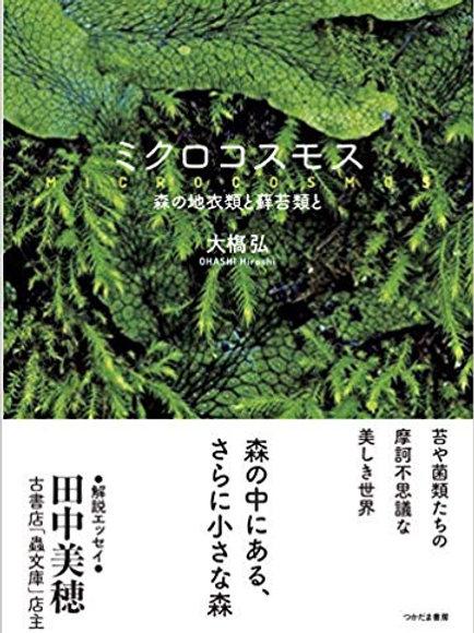 ミクロコスモス――森の地衣類と蘚苔類と