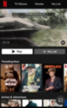 NetflixStreamingService.jpg