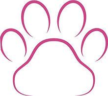 paw pink.jpg