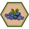 blueberry_hex.png