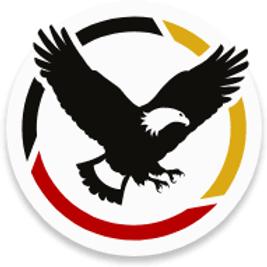tribal symbol.png