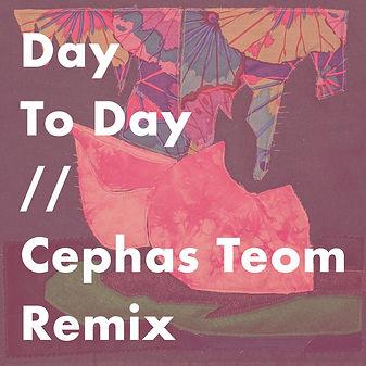 NH Day To Day Remix Packshot.jpg