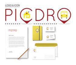 PICDRO Logo & Examples