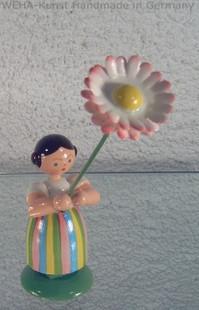 1011 Gänseblümchen