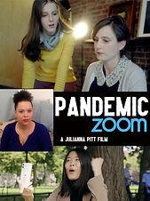 PANDEMIC ZOOM.jpg