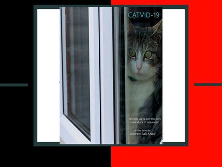 CATVID-19