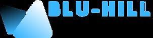Logo Blu Hill Film Festival (1).png