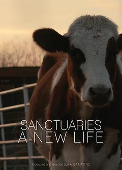 Sanctuaries A New Life.jpg