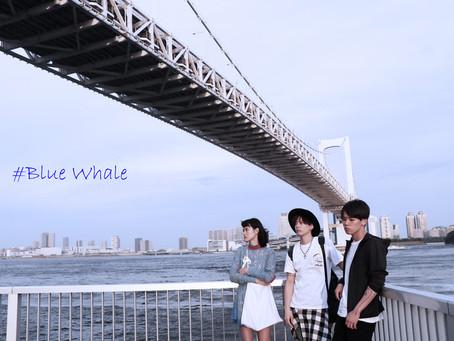 #Blue Whale
