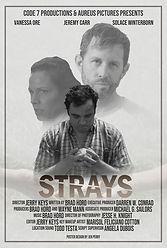 Strays.jpg